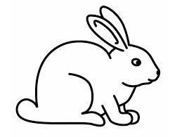 Hasil Gambar Untuk Gambar Binatang Hitam Putih Gambar Hewan Gambar Kelinci Adult Coloring Pages