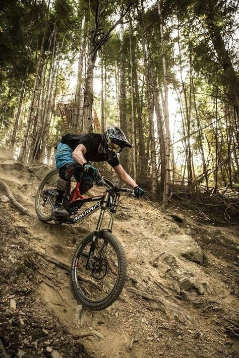 Pin By Domen Permozer On Me Mountain Biking Photography Bike Photography Mountain Bike Art