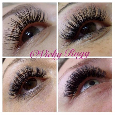 7ff85e42298 4 styles of lashes Classic 2D Volume Hollywood
