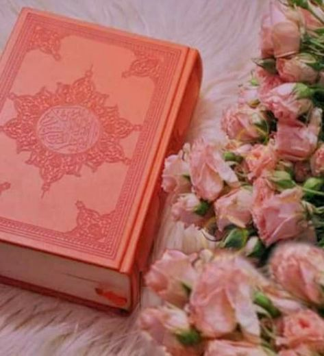 Pin De Duggi Figvi Em Qur An Em 2020 Alcorao