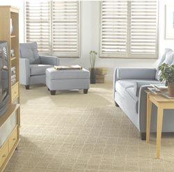 Carpeting In Oklahoma City Ok Living Room Carpet House Flooring Carpet Brands