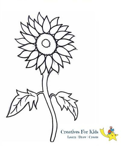 Sunflower is a vibrant yellow colored flower and is easy to