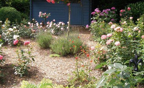 Viel Garten für wenig Geld Rindenmulch, Mulchen und Gartenweg