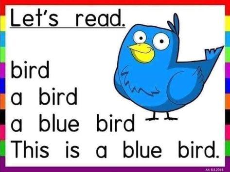 #_Reading_Sheets هدية للحلوين اللى لسه بيتعلموا القراءة هيتعملوا الألوان ادوات النكرة أسماء الحيوانات English   مدونة جنى للأطفال