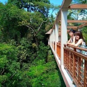 35 Tempat Wisata Di Ubud Untuk Liburan Tak Terlupakan Di 2020 Ubud Bali Liburan