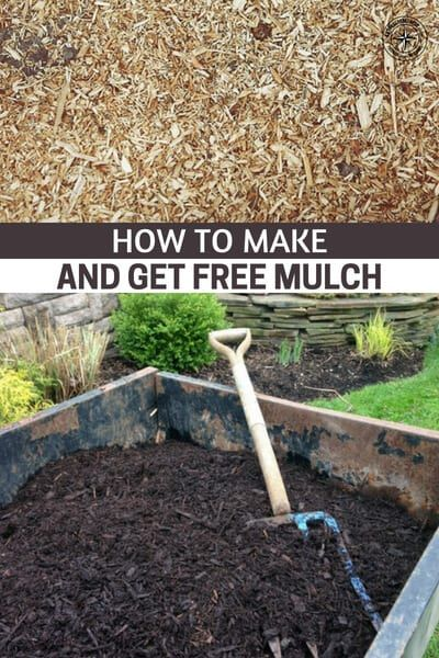 How To Make And Get Free Mulch This Article Offers Some Great Advice On The Subject Of Mulch It Offers Great Ideas For Items T In 2020 Mulch Garden Mulch Aquaponics