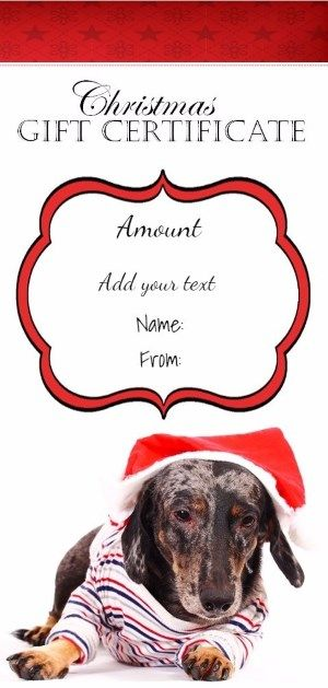 Christmas printable with a picture of a cute dog wearing a Santa - make your own gift voucher template