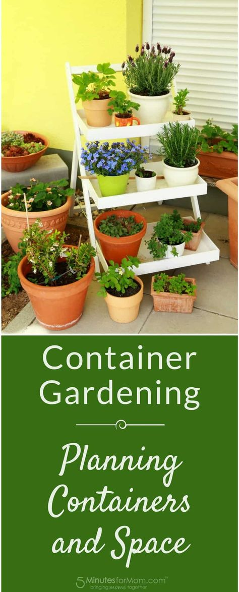 Container Gardening - Planning Containers and Space #garden #gardening #gardenideas #gardeningtips #patiogarden #patiogardenideas #backyard #backyardgarden #backyardgardeningideas #flowergardening #fruitgarden