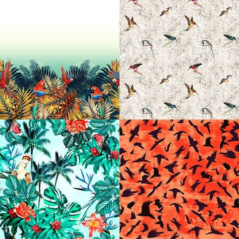 Bird Life inspired Patternbank Studio Designs by EJ Designer, Printmuse, Stamppa, Lubica Hlubenova