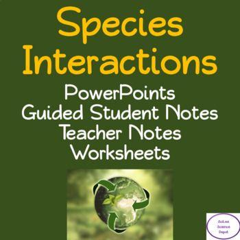 Species Interactions Worksheet Answers - worksheet
