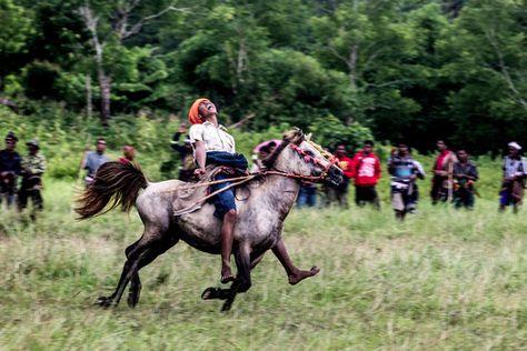 Sumba Photographer James Morgan captures the... | The Khooll