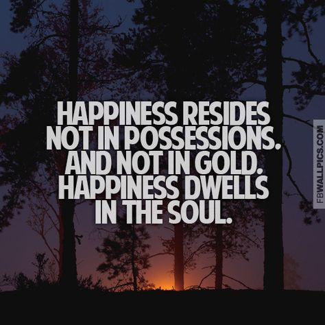Materialistic Quotes Happiness Resides In The Soul Inspiring Quote