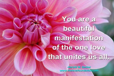 You are a beautiful manifestation of the one love that unites us all.-Harold W. Becker #UnconditionalLove unconditional joy flower pink unity
