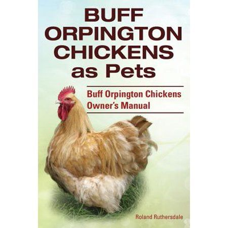 Buff Orpington Chickens As Pets Buff Orpington Chickens Owner S Manual Paperback Walmart Com In 2020 Chicken Owner Buff Orpington Chickens Buff Orpington