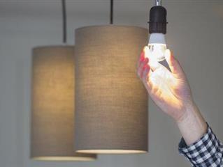 Light Bulb Guide Led Vs Cfl Vs Halogen Light Bulb Led Lighting Solutions Light Bulbs