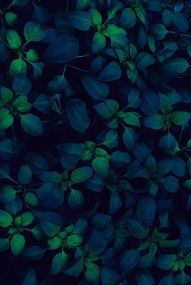 Blue Green Leaves Lock Screen Wallpaper Background For Android Cellphone Iphone Aesthetic Wallpapers Flower Backgrounds Floral Wallpaper