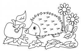 Gratis Malvorlagen Fur Schulkinder Ab 7 Jahren Kreativitat Beim Malen Weiterentwickeln Ausmalbilder Fur Schulkinder A Ausmalbilder Igel Ausmalbild Ausmalen