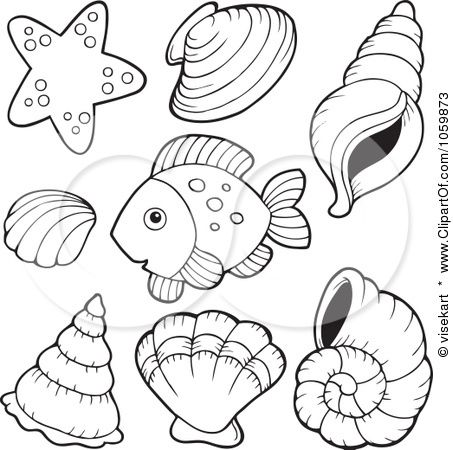 Download And Print Seashell Starfish Coloring Pages
