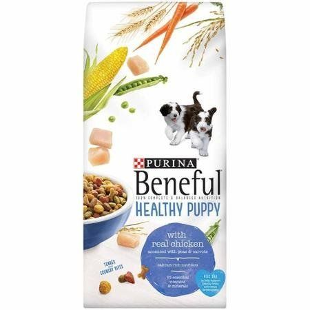 Purina Beneful Healthy Puppy Dog Food 6 3 Lb Bag With Real