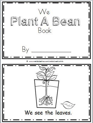 Free Plant Life Cycle Mini Book For Kindergarten Kindergarten