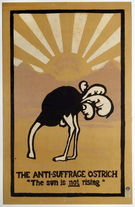 Image result for anti suffragists ostrich