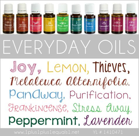 Everyday Oils Kit from Young Living