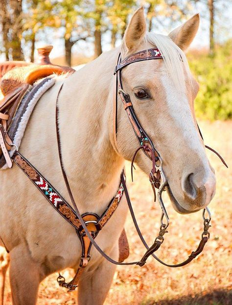 Tooled Beaded Horse Breast Collar Tooled Beaded Horse Breast Collar - Art Of Equitation Cute Horses, Pretty Horses, Horse Love, Beautiful Horses, Animals Beautiful, Westerns, Western Horse Tack, Western Saddles, Western Riding