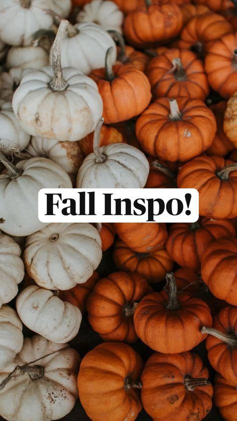 Fall Inspo!