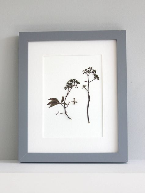 A Handmade Modern Pressed Flower Picture Size 10x8 Inches Including Off White Mount Board Mount Frame Not Included But Will F Flower Artwork Flower Pictures Artwork