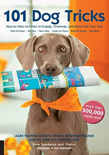 Read Book 101 Dog Tricks Step By Step Activities To Engage