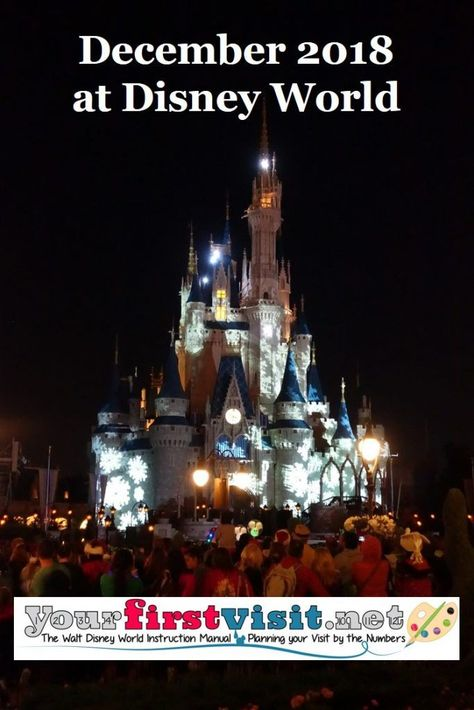 is disney world crowded the week after christmas