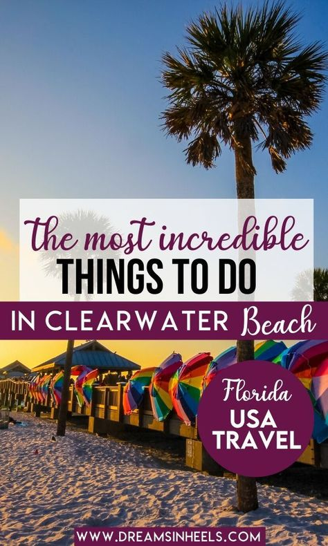 Searching for the best attractions in Clearwater Beach Florida? In this post, a local Floridian shares what are the most fun things to do in Clearwater Beach Florida. Clearwater Florida, Tampa Florida, Florida Keys, Florida Hotels, Florida Travel, Florida Beaches, California Travel, Travel Usa, Clearwater Beach Restaurants