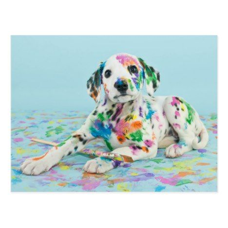 Dalmatian Puppy Postcard #puppies #puppy #cute #dogs #giftideas #gifts