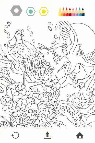 Colorfy Coloring Book Free Inspirational Colorfy Coloring Book Free Android Games In Tap In 2020 Coloring Book App Mermaid Coloring Book Millie Marotta Coloring Book