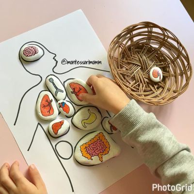 42 Best Montessori Images On Pinterest Kindergarten Day Care And