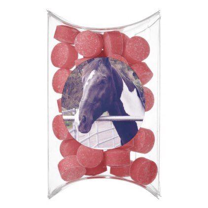 Black Horse Pony Mare Stallion Animal Farm Barn Gum Country