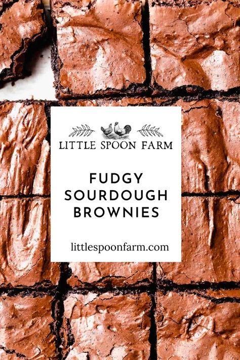 Sourdough Brownies Recipe