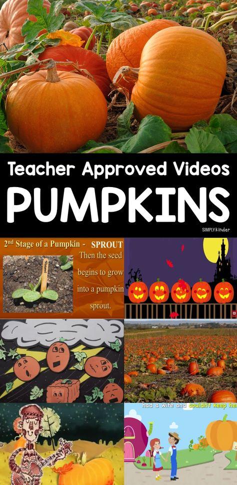Teacher-Approved Videos About Pumpkins for Kindergarten