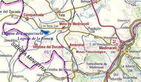 Argantonios: Por tierras fronterizas de Guadalajara y Soria.