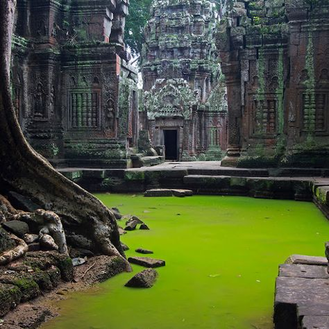 TA PROHM TEMPLE, CAMBODIA Photograph by Peter Nijenhuis Ta Prohm is the modern name of a temple at Angkor, Siem Reap Province, Cambodia, built in the Bayon style largely in the late and early centuries and originally called Rajavihara. Places Around The World, Oh The Places You'll Go, Places To Travel, Travel Destinations, Places To Visit, Around The Worlds, Angkor Temple, Angkor Wat, Hindu Temple
