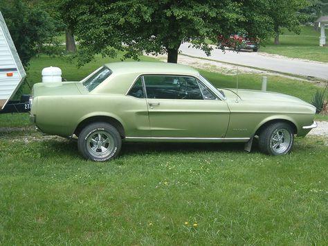 Pin On Mustangs