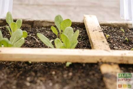 """La méthode du potager en carré est incontestablement à la mode. Au-delà d'être un seul phénomène de mode, elle permet de cultiver sur une faible espace et sans grand entretien une belle diversité de légumes. Quelques carrés (3/4) suffisent ainsi à produire assez pour une famille de 4 personnes. Aujourd'hui, je vous propose un 1er volet d'une série """"carré potager"""" consacrée à la fabrication (bricolage) d'un carré potager. http://www.jardipartage.fr/fabriquer-un-carre-potager/"""