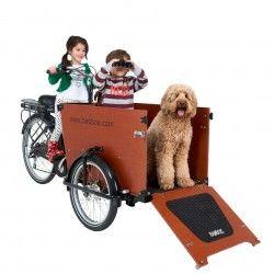 Babboe Dog Lastenfahrrad für Hunde | DAS Transportmittel für