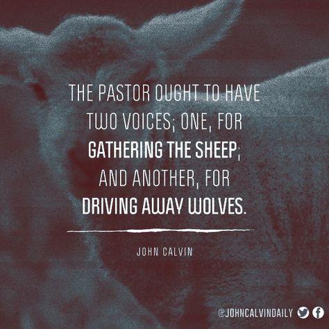 Top quotes by John Calvin-https://s-media-cache-ak0.pinimg.com/474x/a9/03/ce/a903ce370aed79db2399c1fb9b0b33e5.jpg