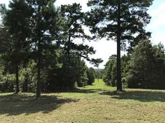 Land for sale in East Texas   Page 4 of 11   Lands of Texas