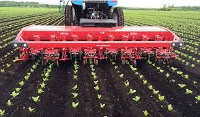 Automatic Inrow Weeder Google Search Modern Agriculture