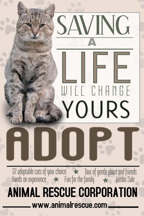 Adopt A Pet Flyer Template In 2020 Adoption Pet Adoption Cat Adoption