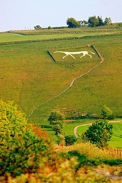 The new Pewsey white horse on Pewsey Hill above Pewsey Vale. The horse was cut into the hillside in 1937 to commemorate the coronation of King George Vl.