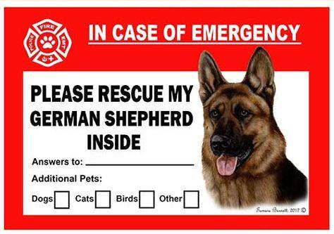 German Shepherd Dog Emergency Window Cling German Shepherd Dogs Shepherd Dog Dog Boarding Near Me