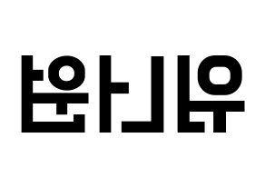 Wanna One 워너원 ワナワン 応援ボード うちわ用 韓国語 ハングル文字型紙 左右反転 ハングル文字 うちわ 型紙 うちわ